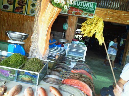 ceburawfish